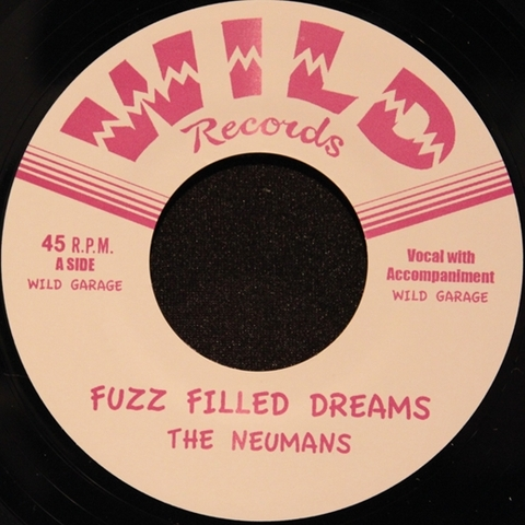 NEUMANS / FUZZ FILLED DREAMS (EP)