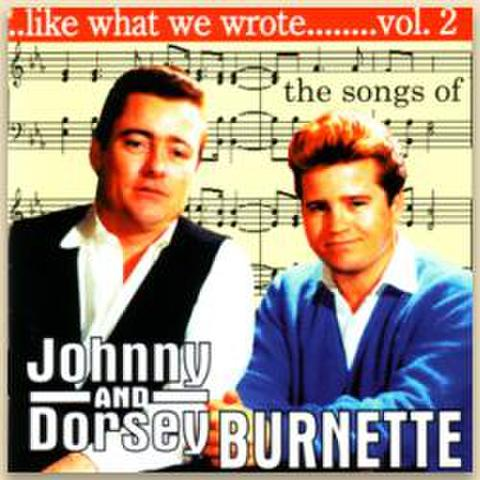 V.A / LIKE WHAT WE WROTE VOL.2 (CD)