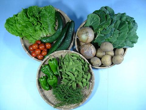 こだわりの野菜セット