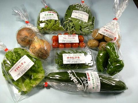 こだわりの野菜セット定期便