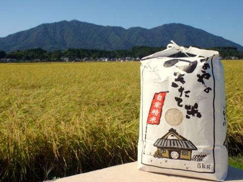 【27年産】石井農園コシヒカリ 白米5kg