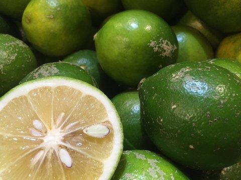 熊本レモン 5kg