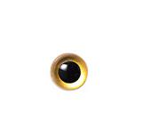 6mm ゴールド  クリスタルアイ