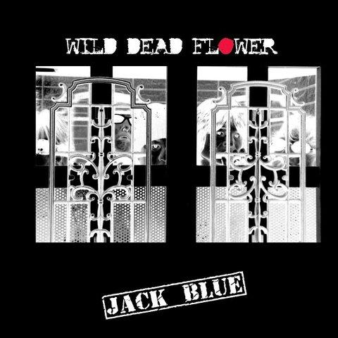 WILD DEAD FLOWER(メール便に限り送料無料)