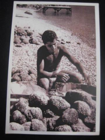【アンティ-クポストカード】 ギリシャ シミ島 ( リプロダクツ) : 296-015