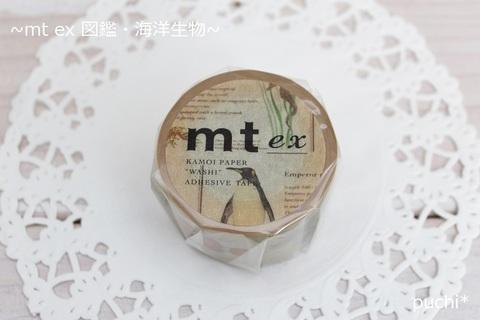 mt ex 図鑑・海洋生物