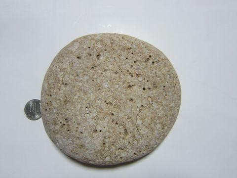 【薬石苑】姫川薬石 虎&寅模様 良形平石 枕石 1,130g