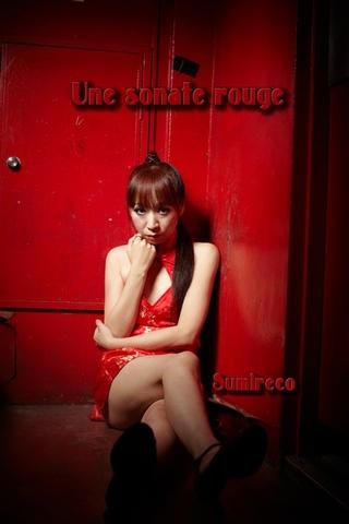 すみれこ書籍写真集 第三十一弾 「Une sonate rouge」