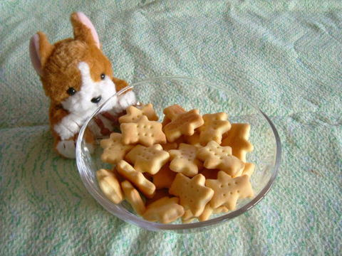 豆乳クッキー(50g)