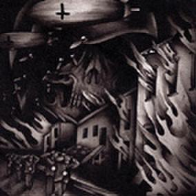 DOMESTIC WAR adnoctum CD