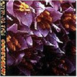 INTEG2000 / FEAR TOMORROW split CD