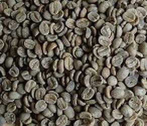 ブラジルセラード   200㌘ 豆