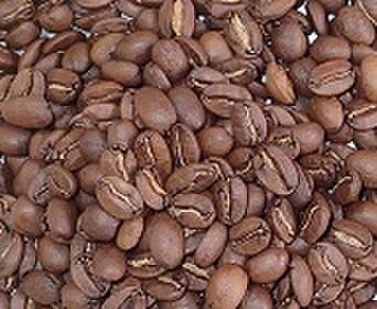 Qmariブレンド    100㌘ 豆
