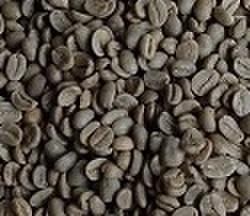 ペルー      100㌘  豆