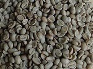 グアテマラSHB    100㌘ 豆