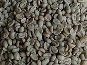 グアテマラSHB   200㌘ 豆