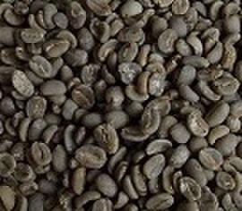 マンデリン      200㌘ 豆