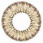 【13時までの注文で即日発送可】EYE DOLL BY LILMOON 1MONTH Cream nuts(度なし)(1箱2枚入り)