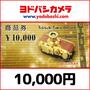 [タイムセール]ヨドバシカメラ商品券(10,000円)